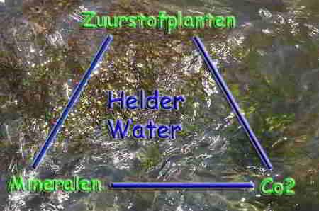 Groene vijver helder maken; zweefalg in vijverwater bestrijden