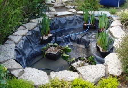 Beplantingsplan zuurstofplanten waterlelies en for Kleine tuinvijver